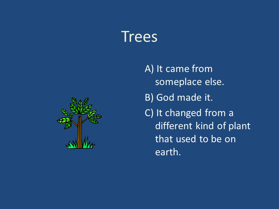 Trees A) It came from someplace else. B) God made it. C) It changed from a different kind of plant that used to be on earth.
