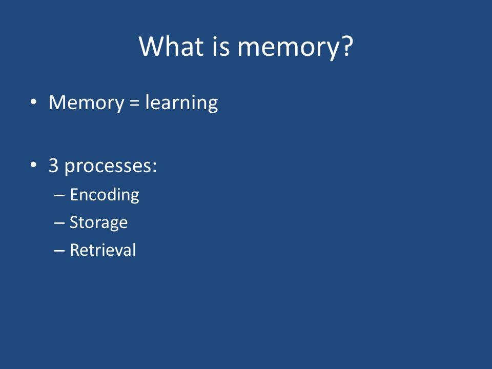 The development of memory The development of STM The development of WM The development of LTM