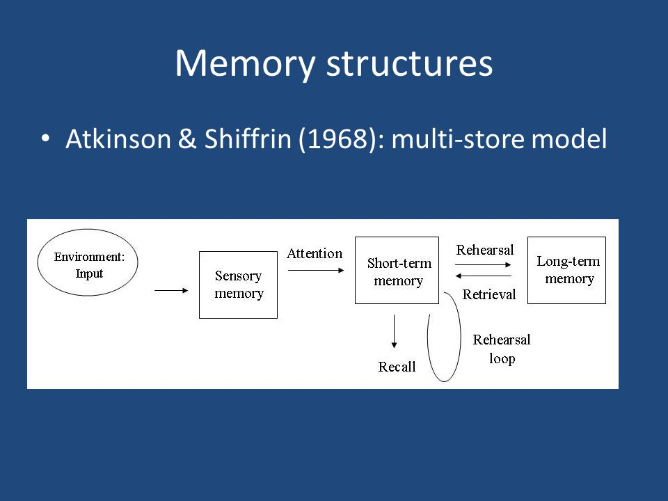 Memory structures Atkinson & Shiffrin (1968): multi-store model