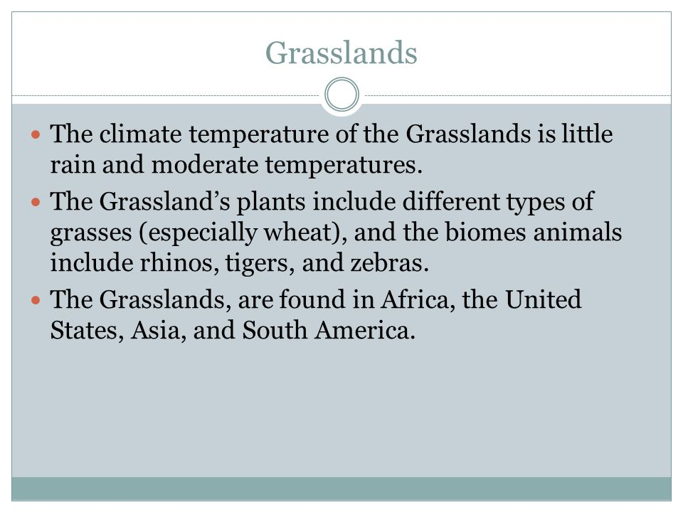 Grasslands The climate temperature of the Grasslands is little rain and moderate temperatures. The Grassland's plants include different types of grass