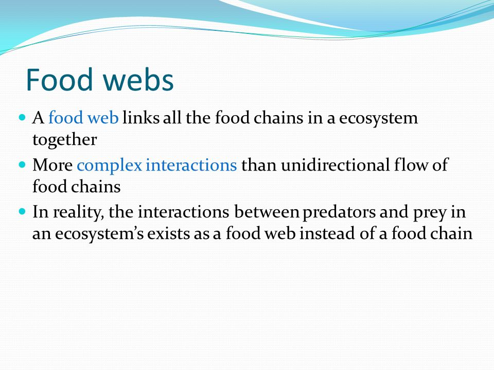 Food webs A food web links all the food chains in a ecosystem together More complex interactions than unidirectional flow of food chains In reality, t