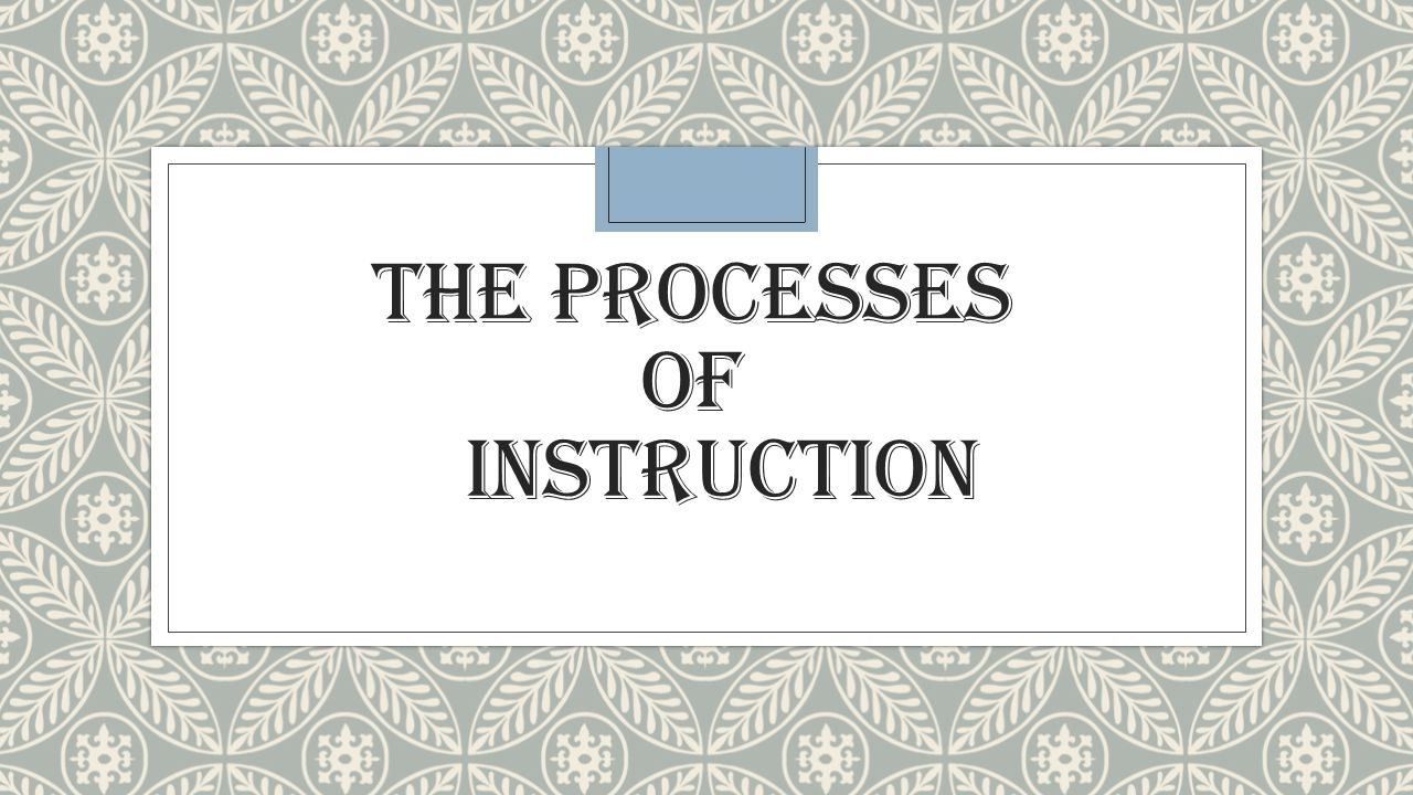 THE PROCESSES OF INSTRUCTION