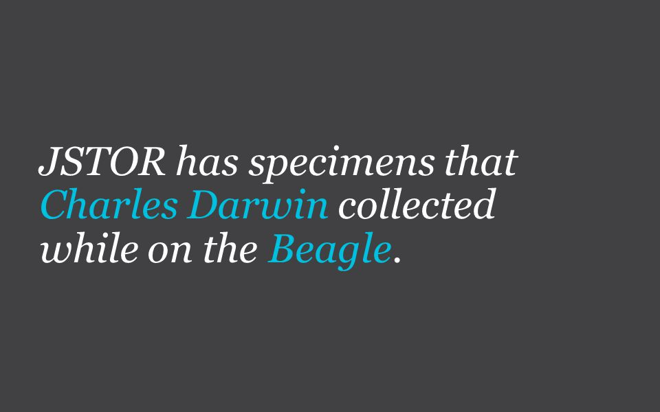 JSTOR has specimens that Charles Darwin collected while on the Beagle.