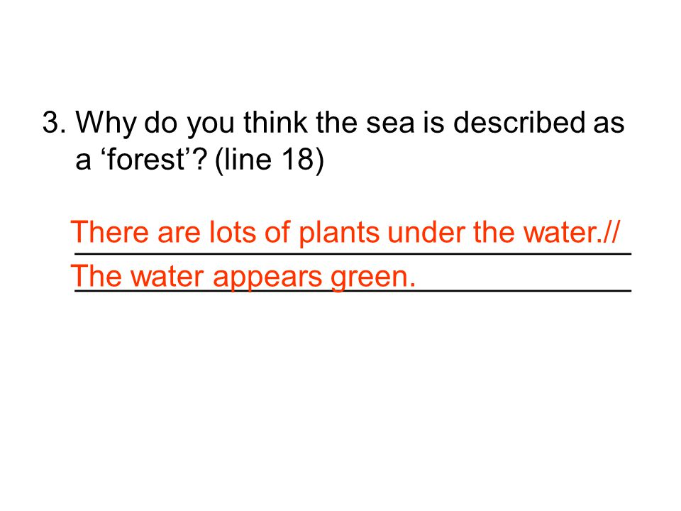 3. Why do you think the sea is described as a 'forest'? (line 18) _________________________________ _________________________________ There are lots o