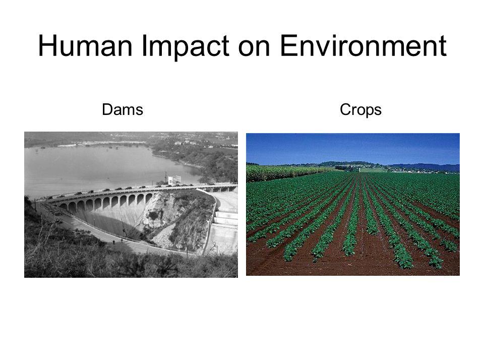 Human Impact on Environment DamsCrops