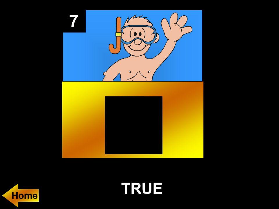 7 TRUE