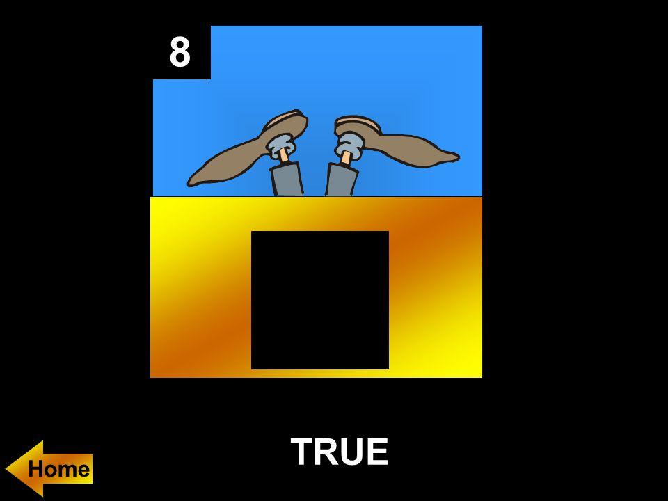 8 TRUE