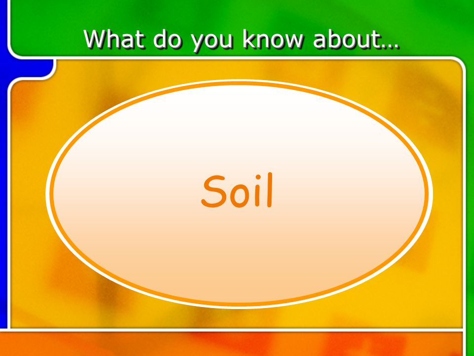TOPIC 2 What do you know about… Soil