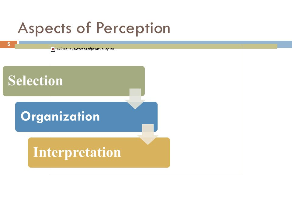 Perceptual Selection 6 Includes the product's physical attributes, package design, brand name, advertising and more… Nature of the stimulus Based on familiarity, previous experience or expectations.