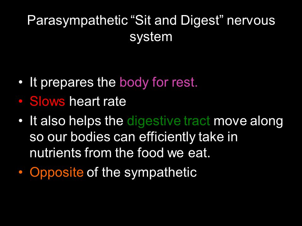 """Parasympathetic """"Sit and Digest"""" nervous system It prepares the body for rest. Slows heart rate It also helps the digestive tract move along so our bo"""