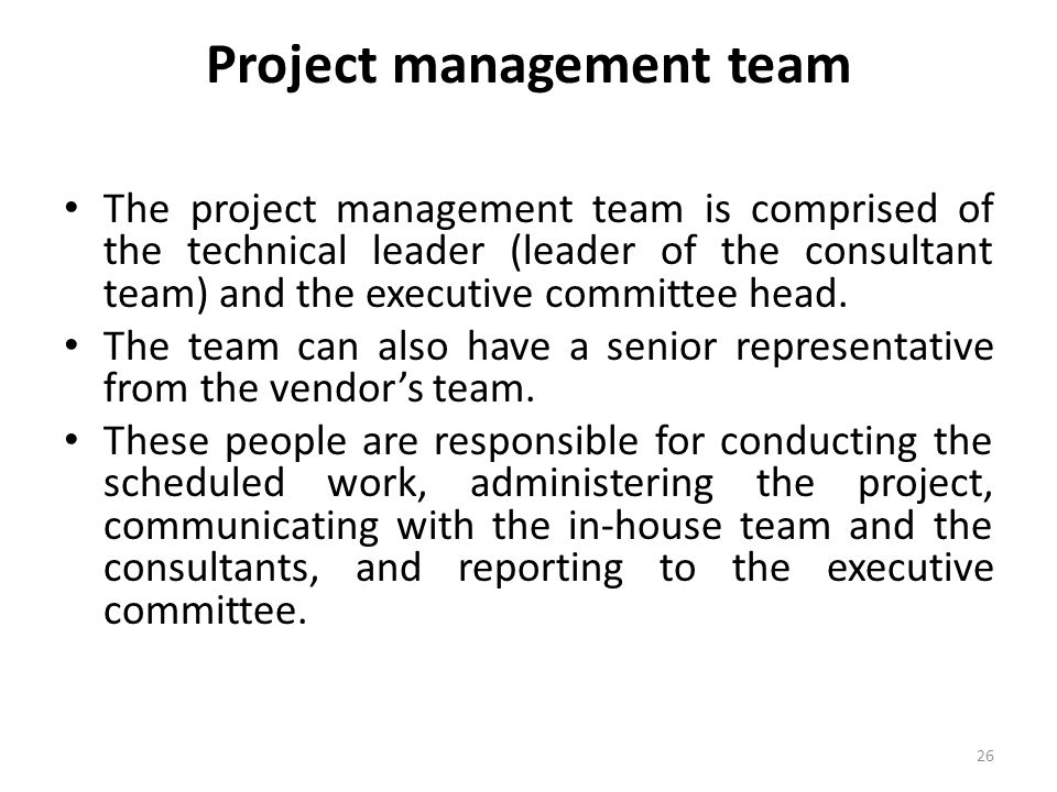 Project management team The project management team is comprised of the technical leader (leader of the consultant team) and the executive committee h