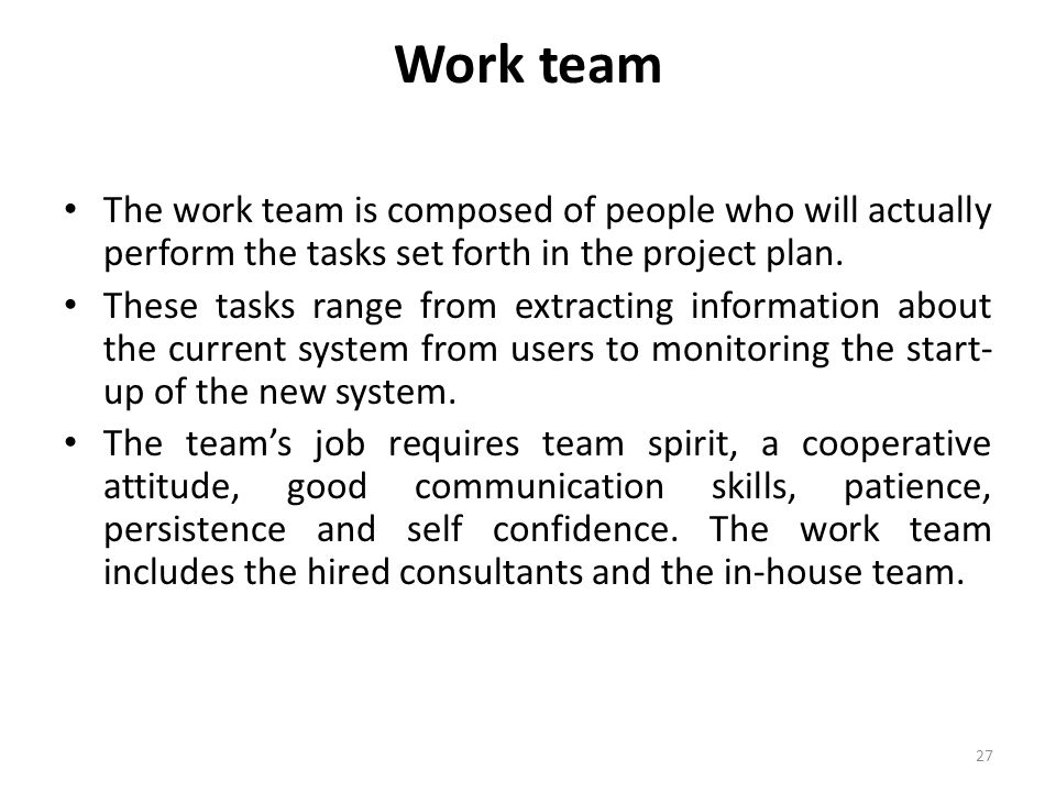 Work team The work team is composed of people who will actually perform the tasks set forth in the project plan. These tasks range from extracting inf