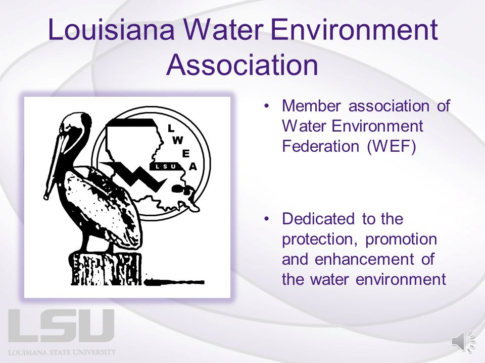 Louisiana Water Environment Association Member association of Water Environment Federation (WEF) Dedicated to the protection, promotion and enhancement of the water environment