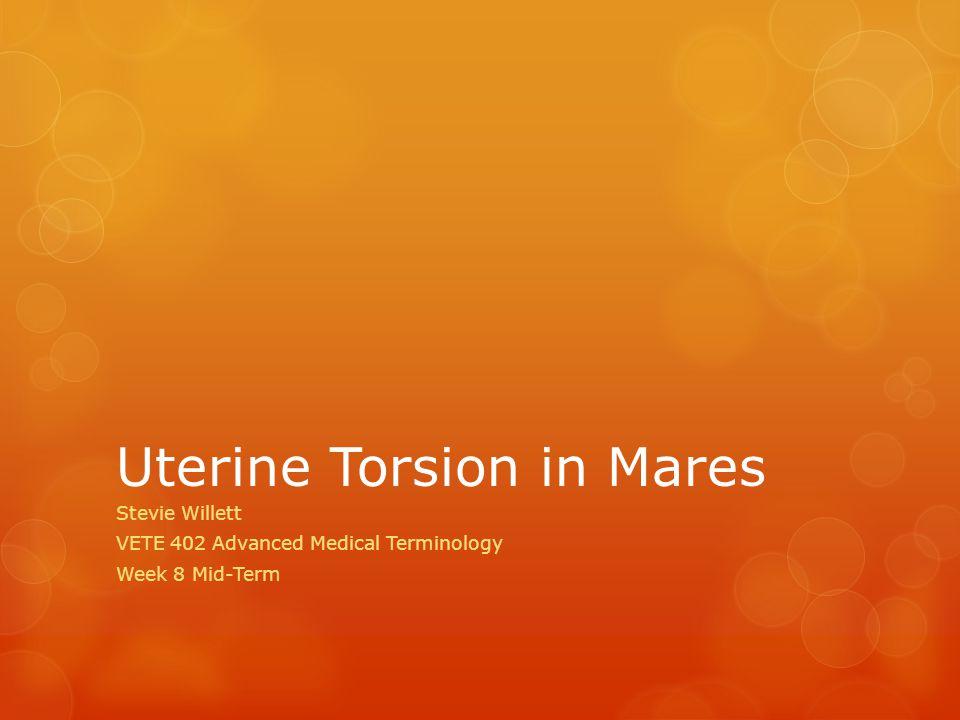 Uterine Torsion in Mares Stevie Willett VETE 402 Advanced Medical Terminology Week 8 Mid-Term