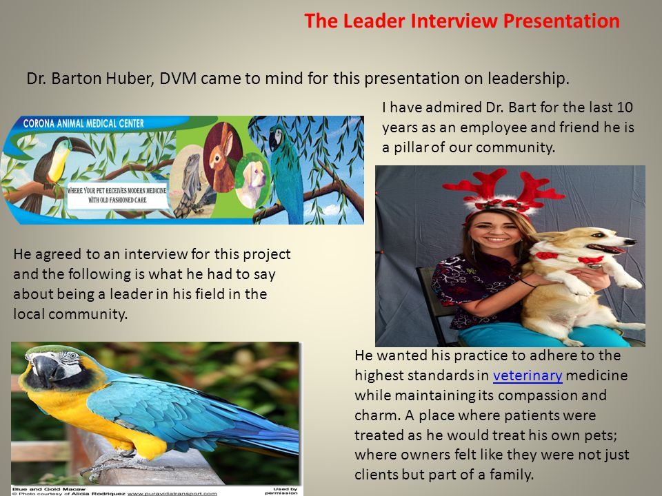 The Leader Interview Presentation Dr. Barton Huber, DVM came to mind for this presentation on leadership. He wanted his practice to adhere to the high
