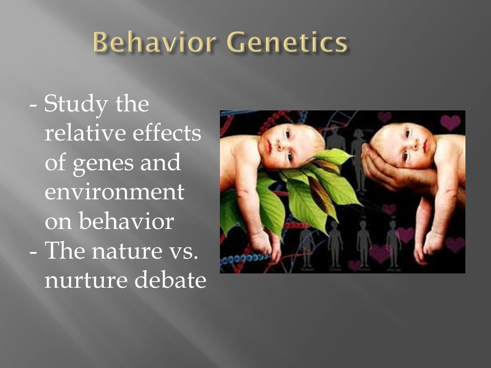 -Study the relative effects of genes and environment on behavior -The nature vs. nurture debate
