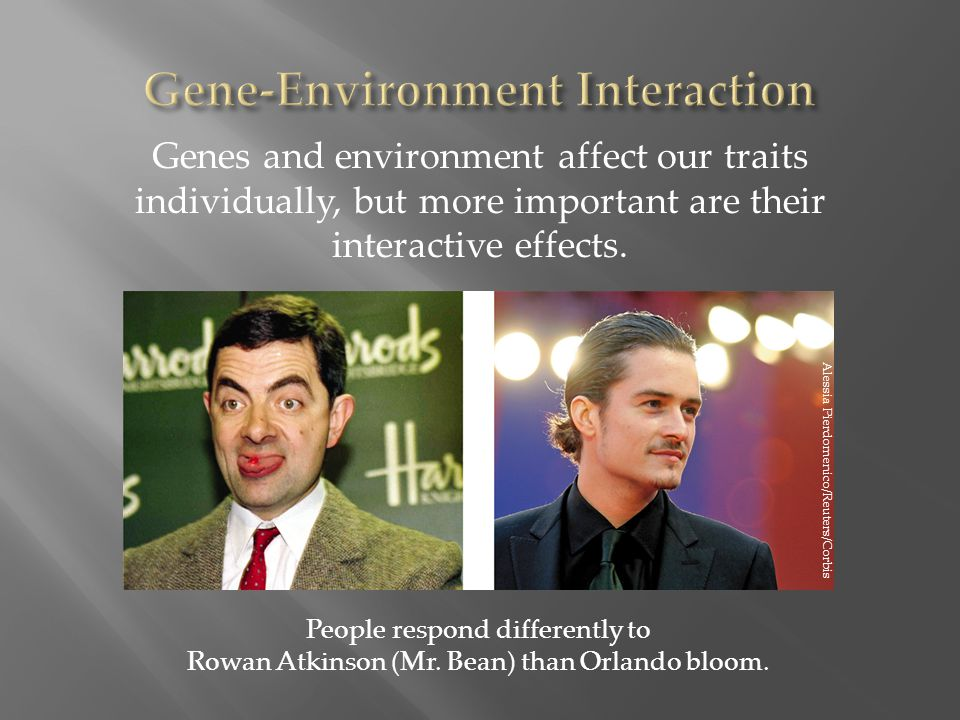 Genes and environment affect our traits individually, but more important are their interactive effects.