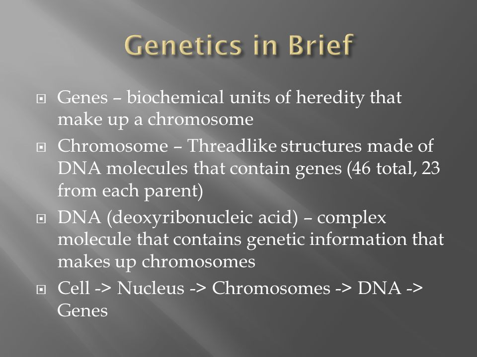  Genes – biochemical units of heredity that make up a chromosome  Chromosome – Threadlike structures made of DNA molecules that contain genes (46 to