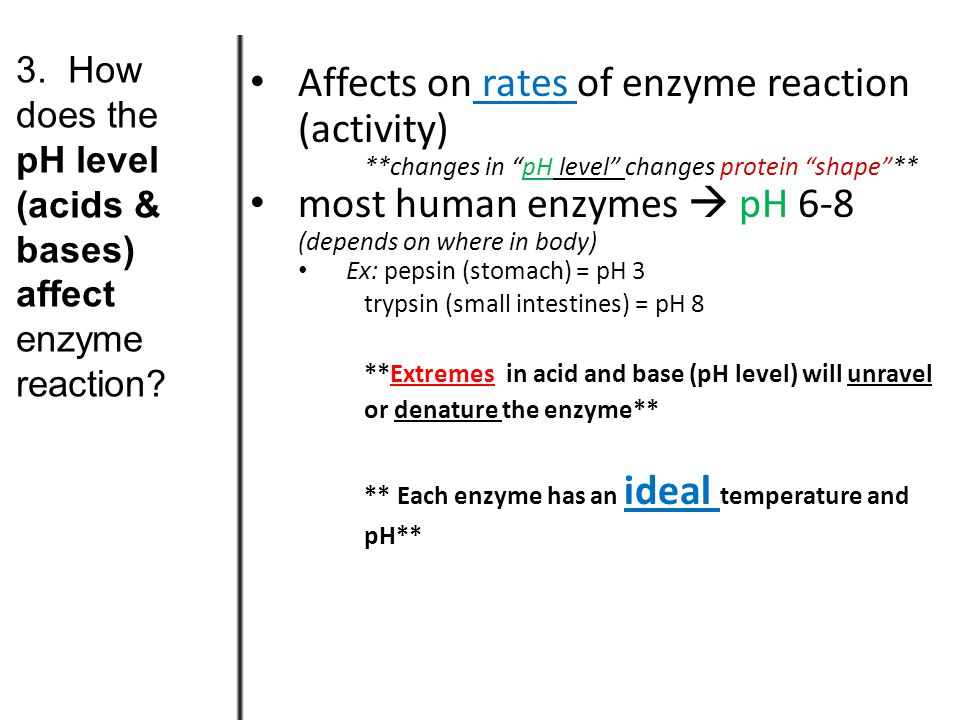 37° Temperature temperature reaction rate What's happening here ! human enzymes