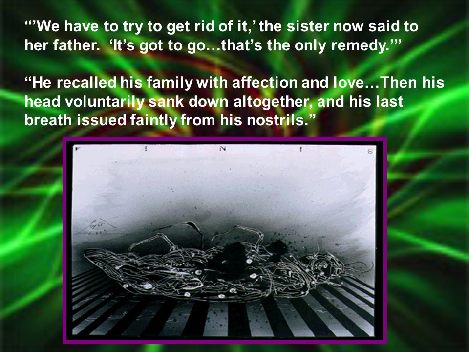 """""""'We have to try to get rid of it,' the sister now said to her father. 'It's got to go…that's the only remedy.'"""" """"He recalled his family with affectio"""