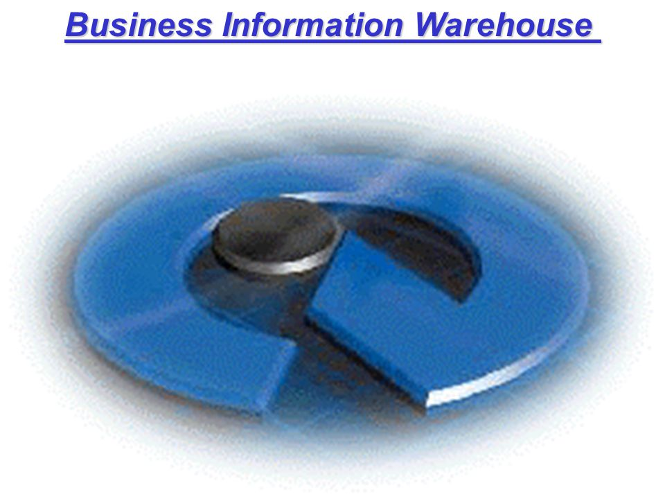 Business Information Warehouse Business Information Warehouse