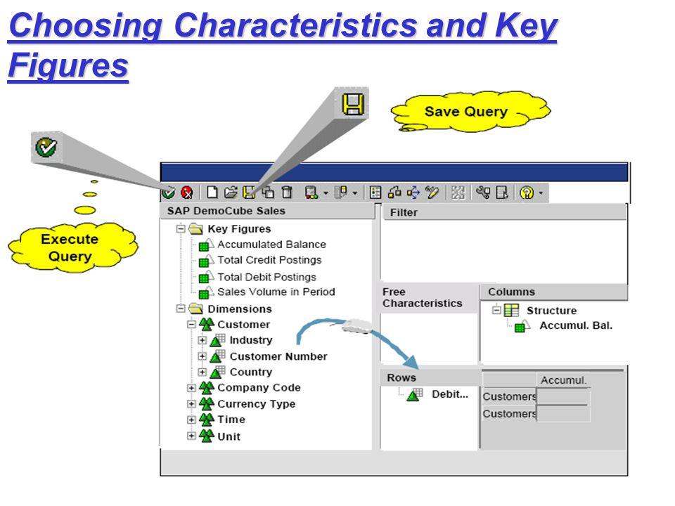 Choosing Characteristics and Key Figures