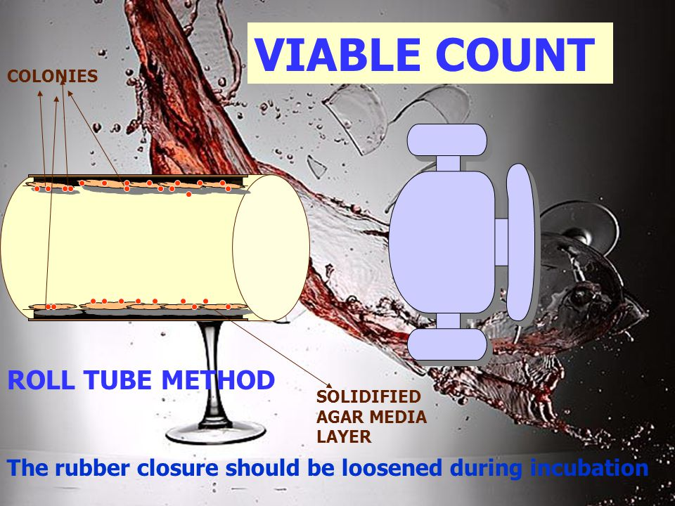 VIABLE COUNT ROLL TUBE METHOD SOLIDIFIED AGAR MEDIA LAYER COLONIES The rubber closure should be loosened during incubation