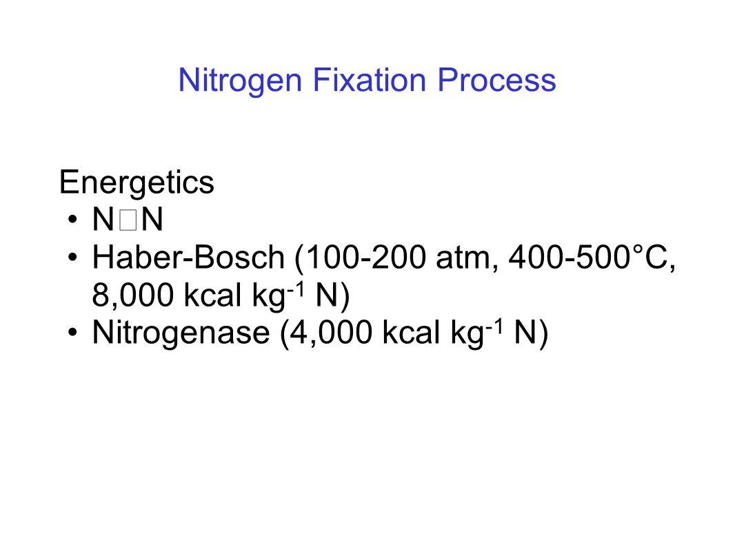 Nitrogen Fixation Process Energetics N  N Haber-Bosch (100-200 atm, 400-500°C, 8,000 kcal kg -1 N) Nitrogenase (4,000 kcal kg -1 N)