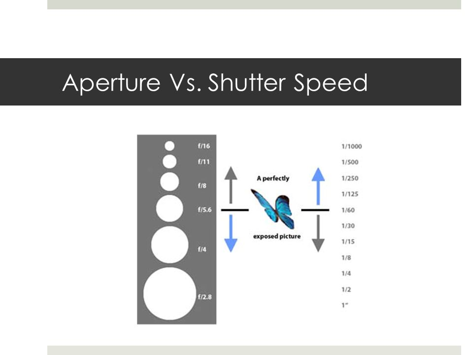Aperture Vs. Shutter Speed