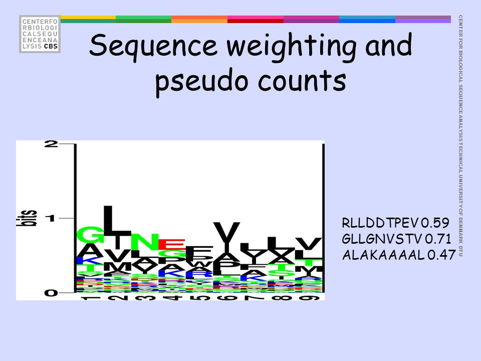 CENTER FOR BIOLOGICAL SEQUENCE ANALYSISTECHNICAL UNIVERSITY OF DENMARK DTU Sequence weighting and pseudo counts RLLDDTPEV 0.59 GLLGNVSTV 0.71 ALAKAAAA