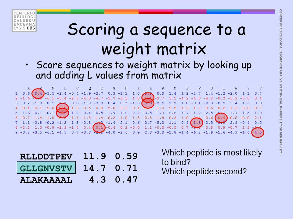 CENTER FOR BIOLOGICAL SEQUENCE ANALYSISTECHNICAL UNIVERSITY OF DENMARK DTU Score sequences to weight matrix by looking up and adding L values from mat