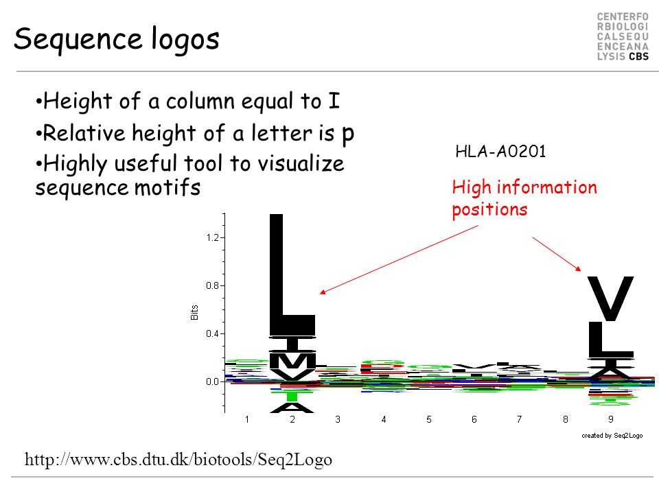 Sequence logos Height of a column equal to I Relative height of a letter is p Highly useful tool to visualize sequence motifs High information positions HLA-A0201 http://www.cbs.dtu.dk/biotools/Seq2Logo