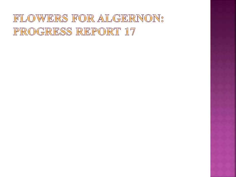  He asks that flowers are put on Algernon's grave
