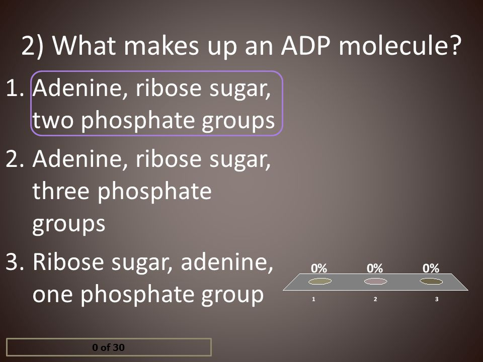13) What is an example of an electron carrier? 1.Pyruvic acid 2.ATP 3.NAD+ & NADPH 4.AMP