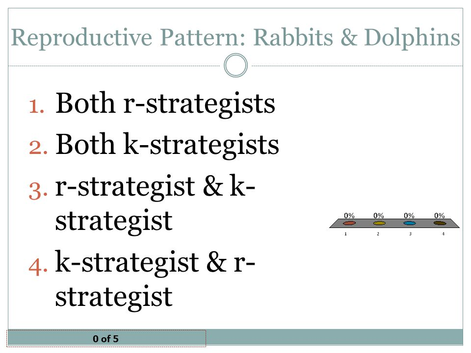Reproductive Pattern: Rabbits & Dolphins 0 of 5 1.