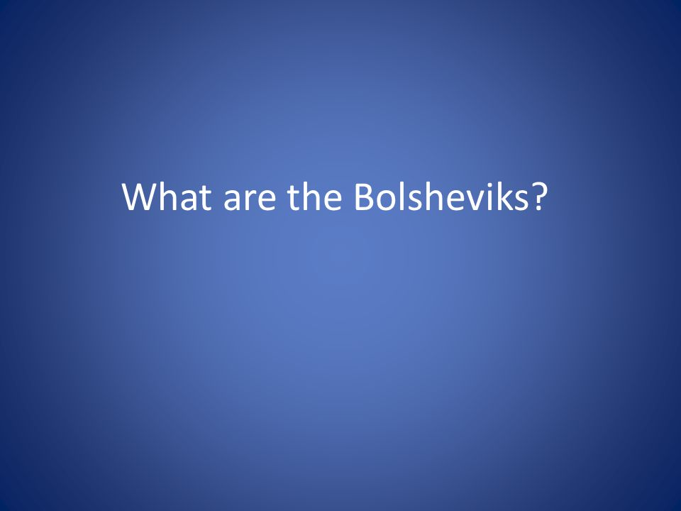 What are the Bolsheviks?