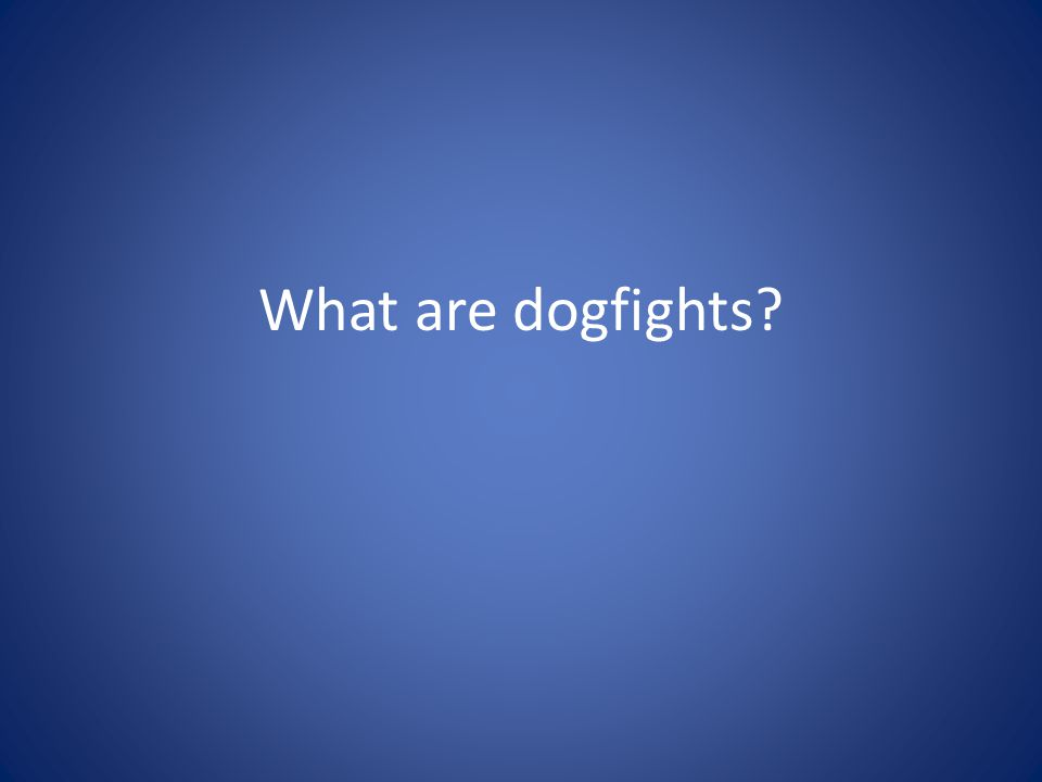 What are dogfights?