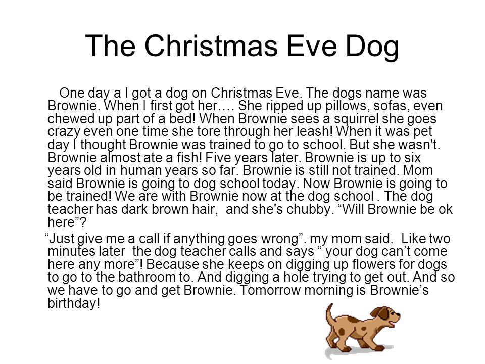 The Christmas Eve Dog One day a I got a dog on Christmas Eve.