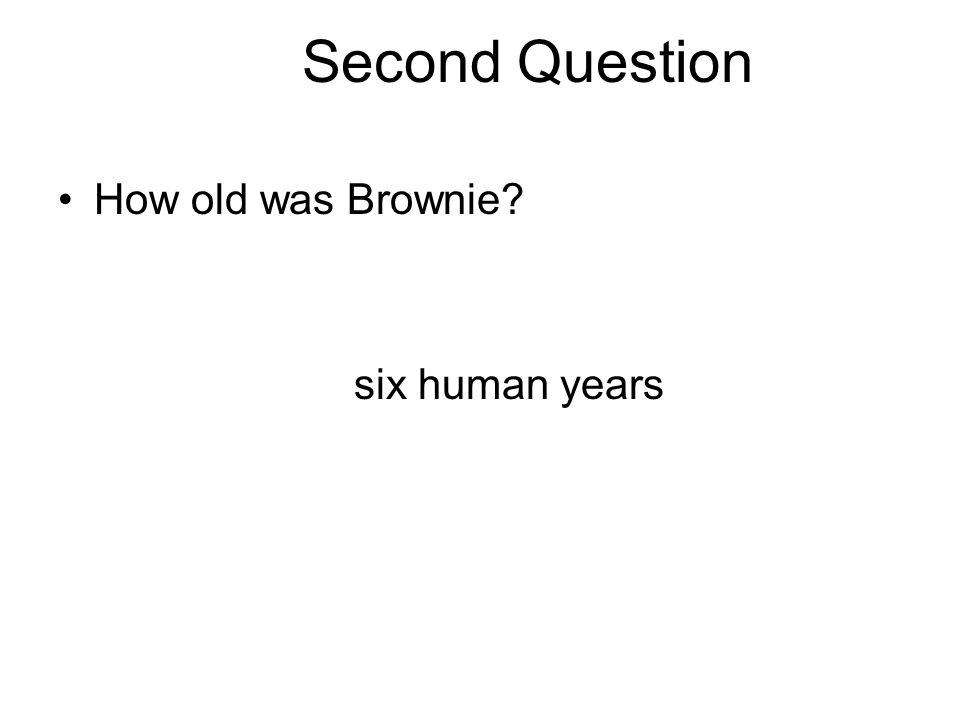 Second Question How old was Brownie? six human years