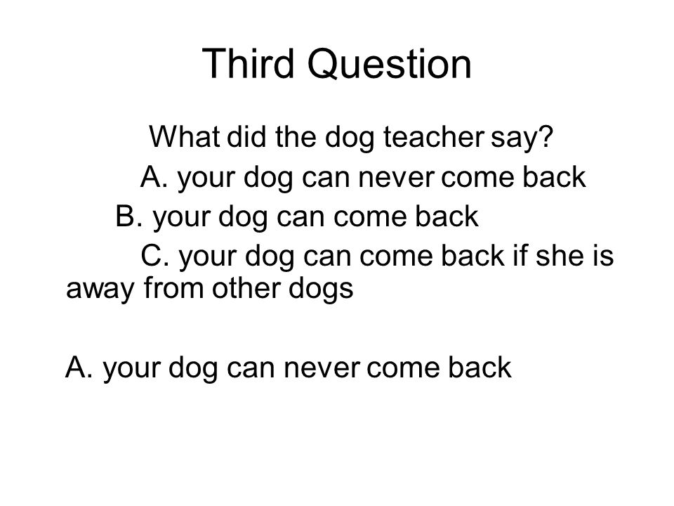 Third Question What did the dog teacher say. A. your dog can never come back B.