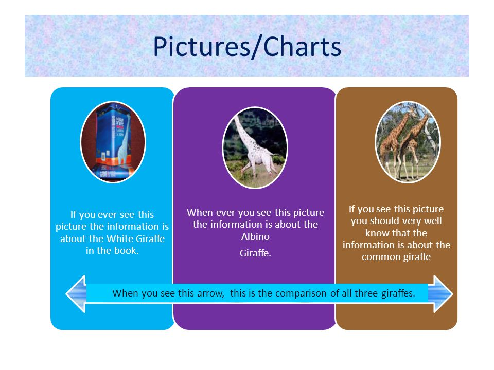 Pictures/Charts If you ever see this picture the information is about the White Giraffe in the book.