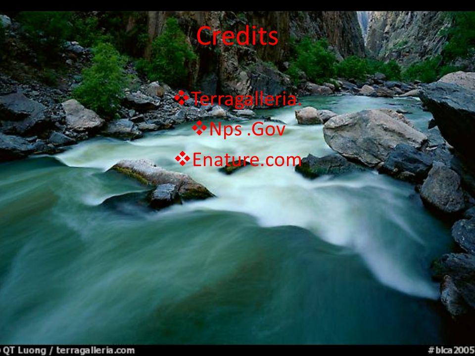 Credits TTerragalleria. NNps.Gov EEnature.com