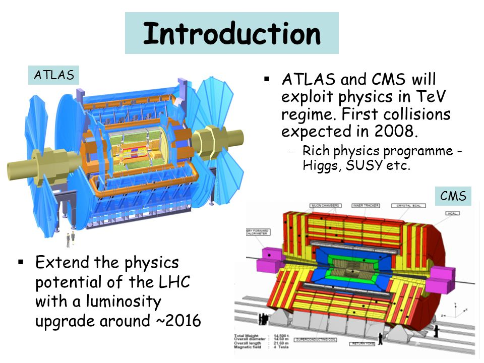 Uses MEMS (Micro Electro Mechanical Systems) technology to engineer structures.