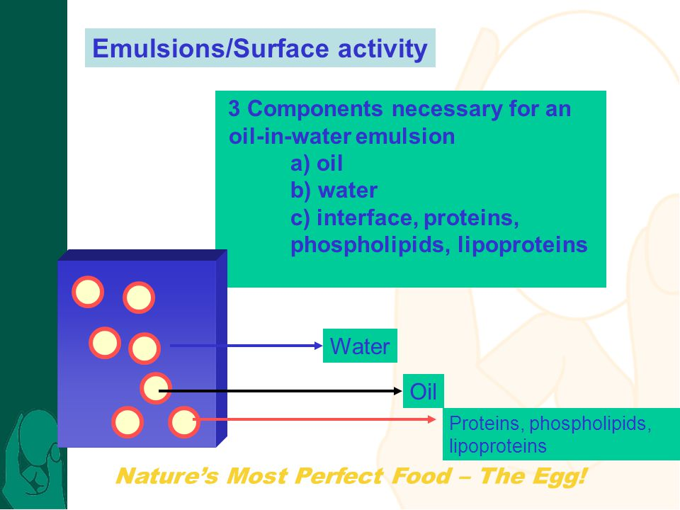 Nature's Most Perfect Food – The Egg! Emulsions/Surface activity 3 Components necessary for an oil-in-water emulsion a) oil b) water c) interface, pro