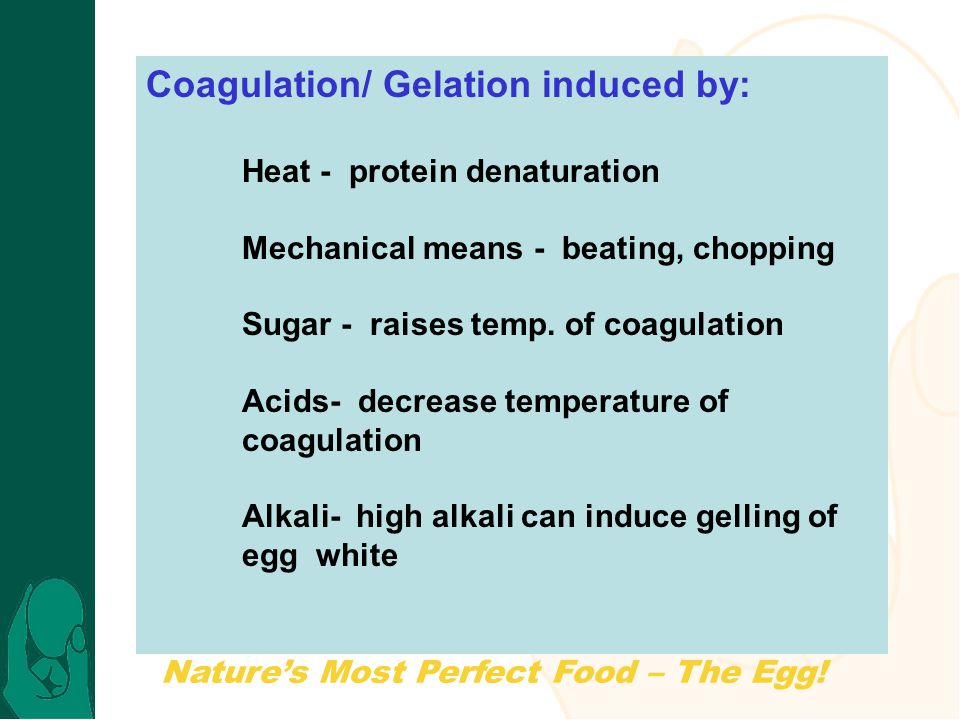 Nature's Most Perfect Food – The Egg! Coagulation/ Gelation induced by: Heat - protein denaturation Mechanical means - beating, chopping Sugar - raise