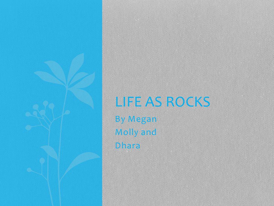 By Megan Molly and Dhara LIFE AS ROCKS