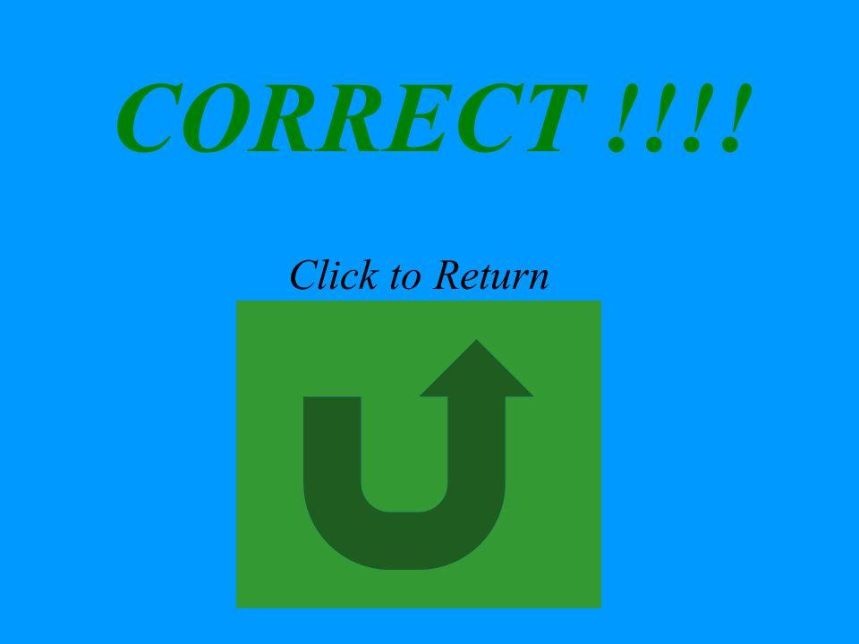 CORRECT !!!! Click to Return