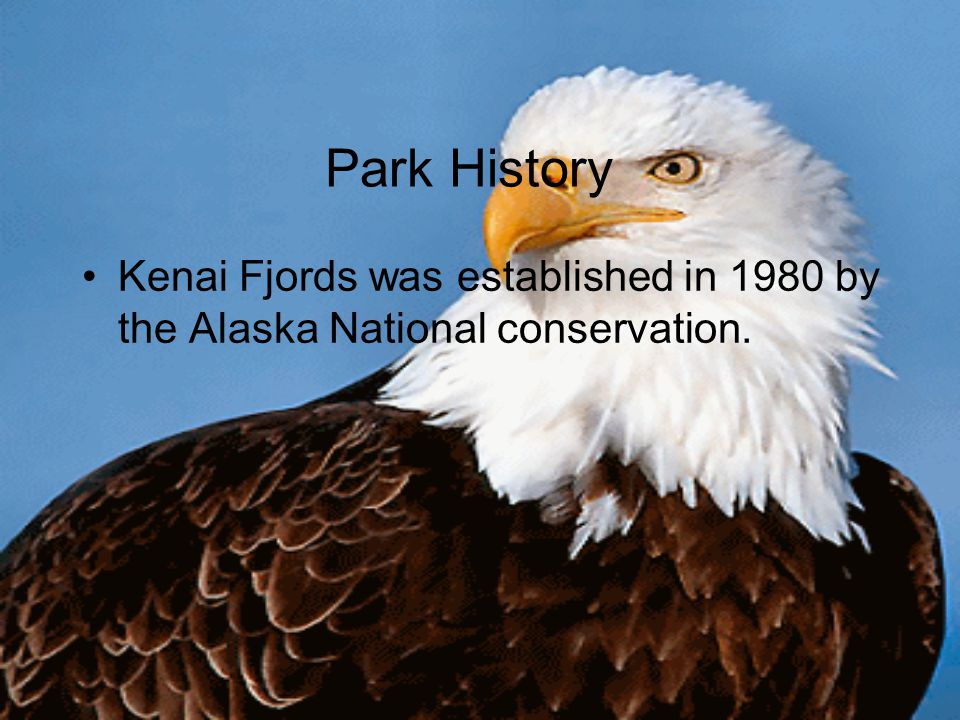 Park History Kenai Fjords was established in 1980 by the Alaska National conservation.