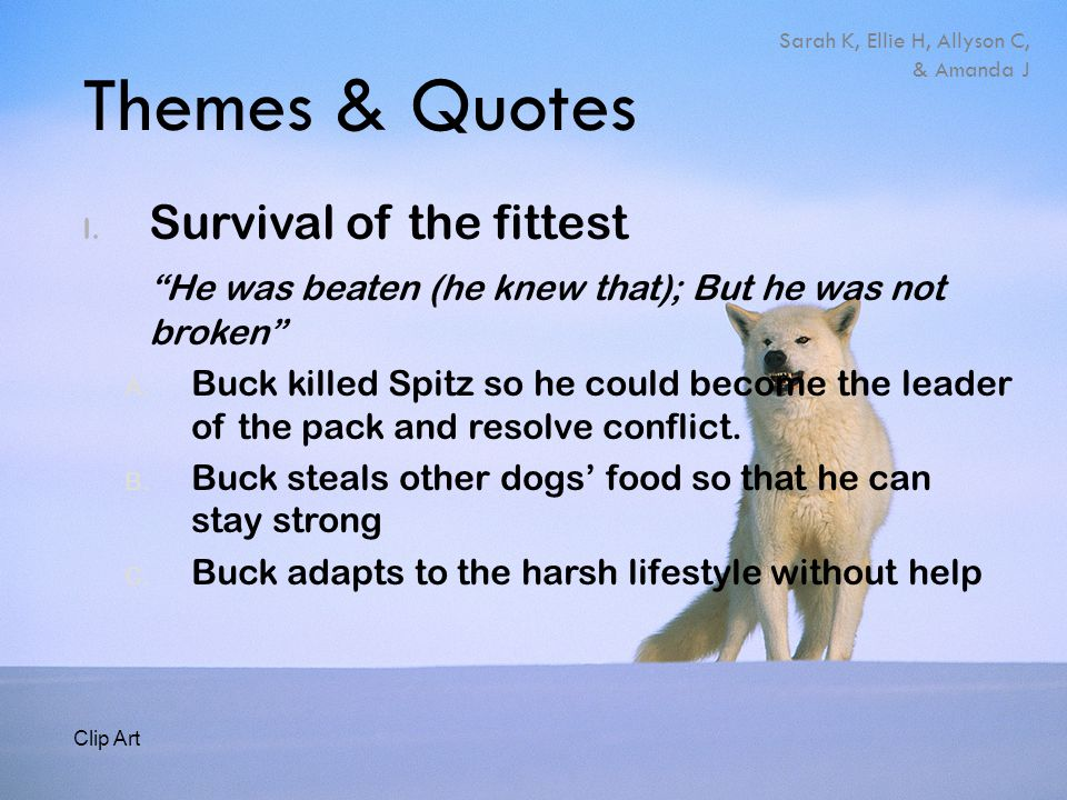 "Themes & Quotes I. Survival of the fittest ""He was beaten (he knew that); But he was not broken"" A. Buck killed Spitz so he could become the leader of"