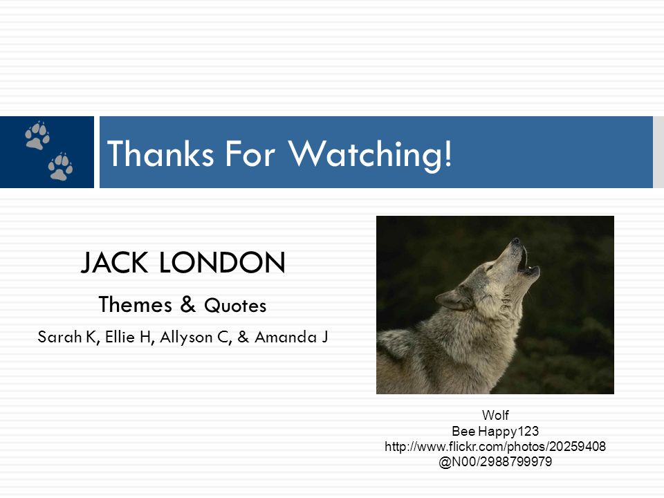 JACK LONDON Themes & Quotes Sarah K, Ellie H, Allyson C, & Amanda J Thanks For Watching! Wolf Bee Happy123 http://www.flickr.com/photos/20259408 @N00/